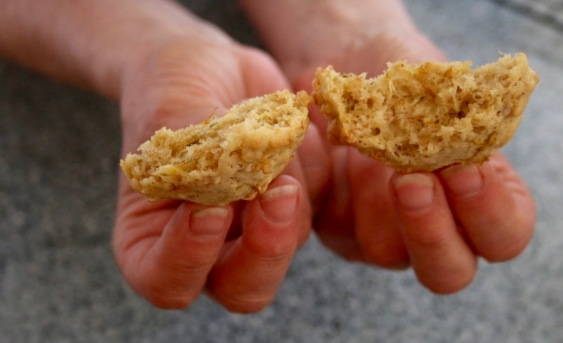 Post 59 Dandelion Cookies Broken