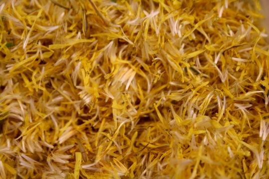 Post 59 Dandelion Florets