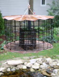 Post 79 Suet Feeder 1